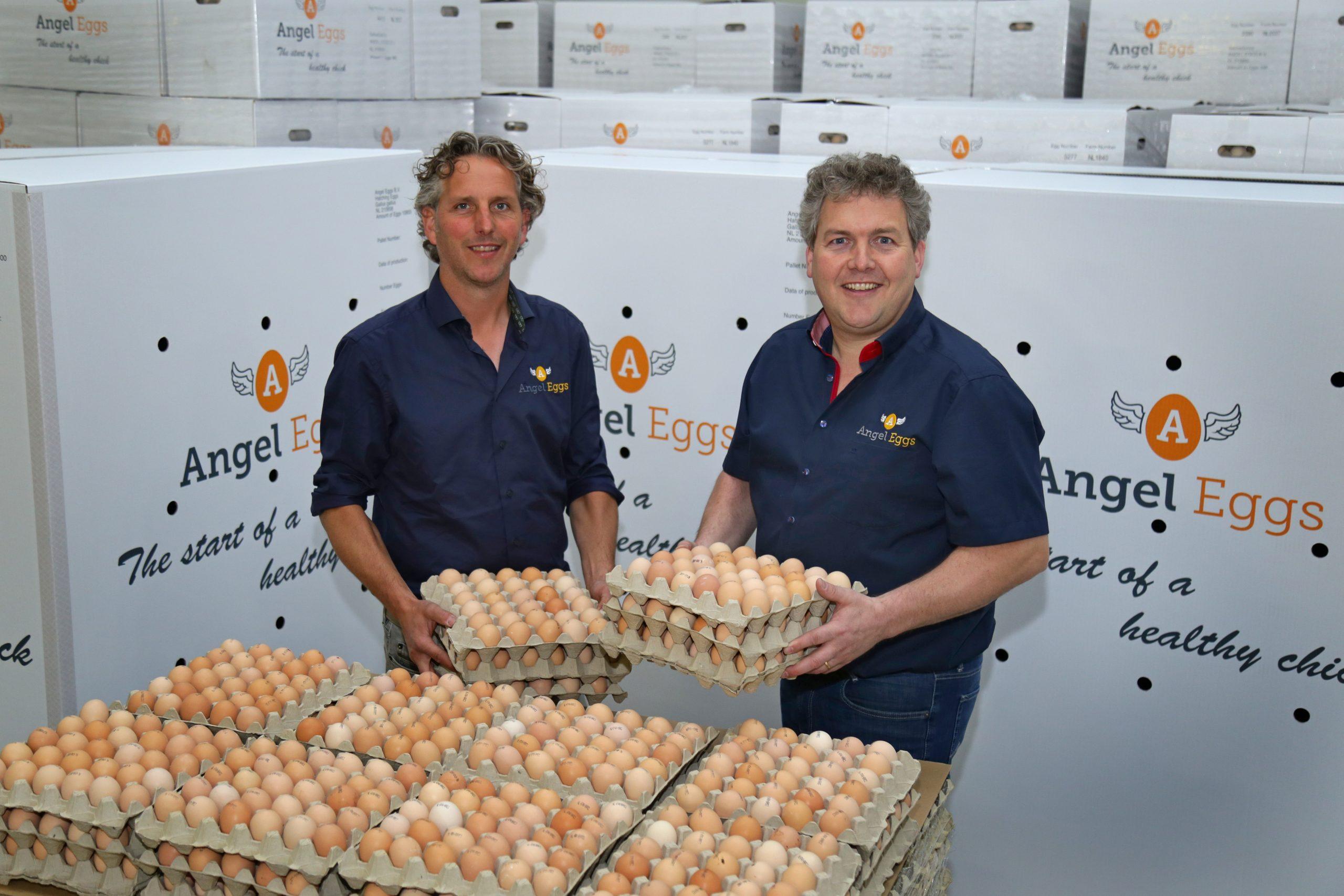 Angel Eggs B.V.