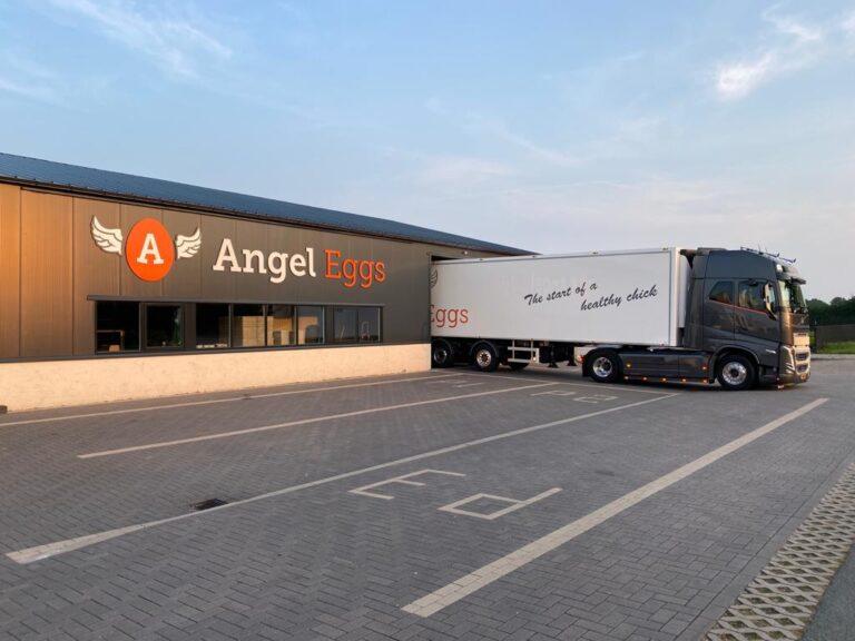 Angel Eggs Vrachtwagen 1